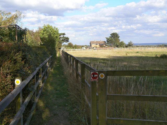Field edge, Cropwell Butler