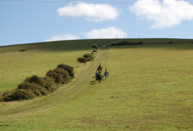 Horse riders on Ballard Down