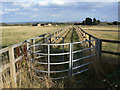 SK6836 : Footpath near Cropwell Butler by Alan Murray-Rust