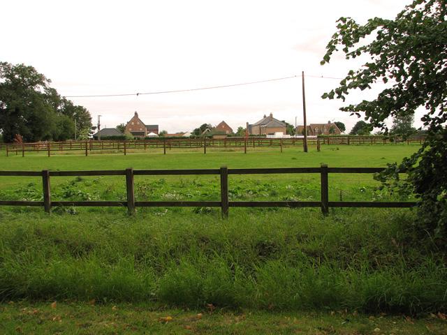 Paddocks beside Hale Road, Ashill