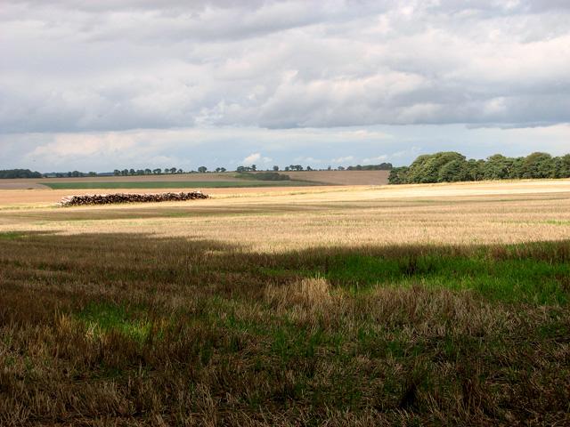 Undulating farmland north of Brink Hill, Gayton
