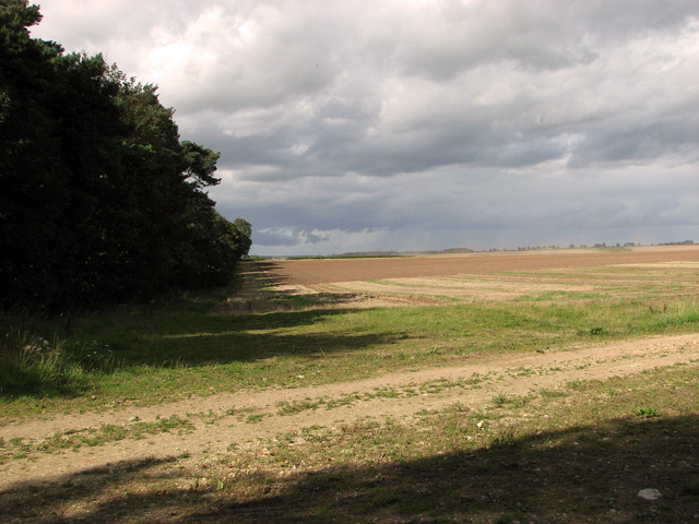 View along Middle Belt, Gayton