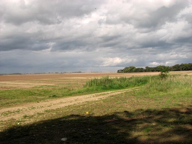 A blustery day - farmland NE of Gayton