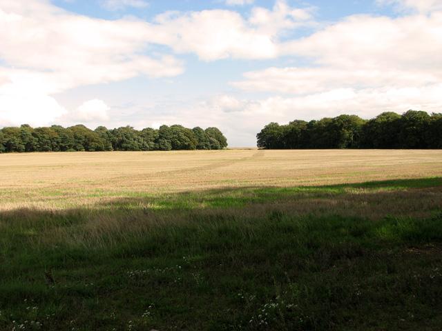 View toward Brink Hill, Gayton