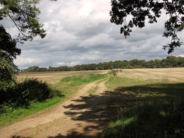 Bridleway from Middle Belt to Long Belt, Gayton
