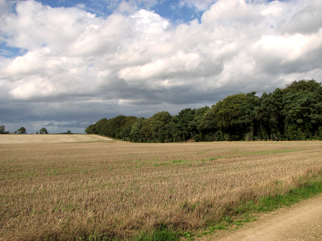 View along Middle Belt, Gayton