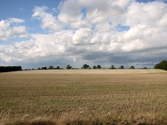 Harvested field between Green Hill and Middle Belt, Gayton