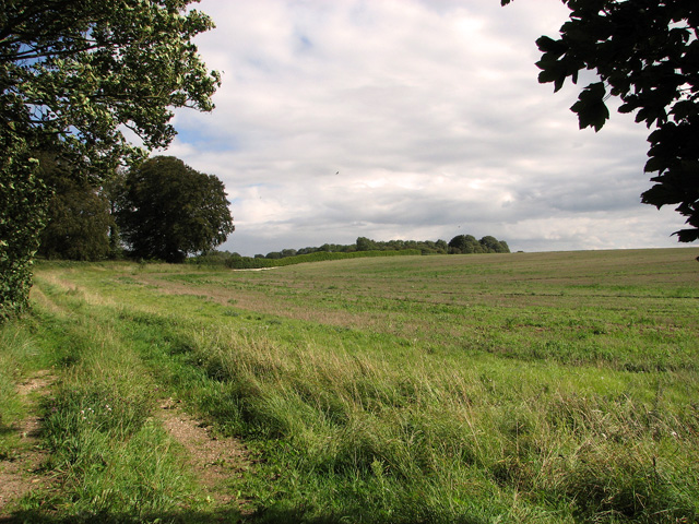 The southern edge of Gravelpit Plantation, Gayton