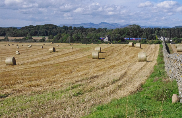 Field near Cark