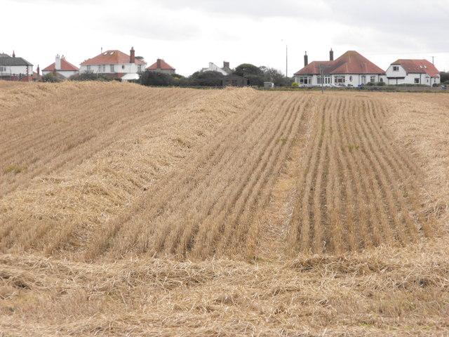 Farmland near North Landing