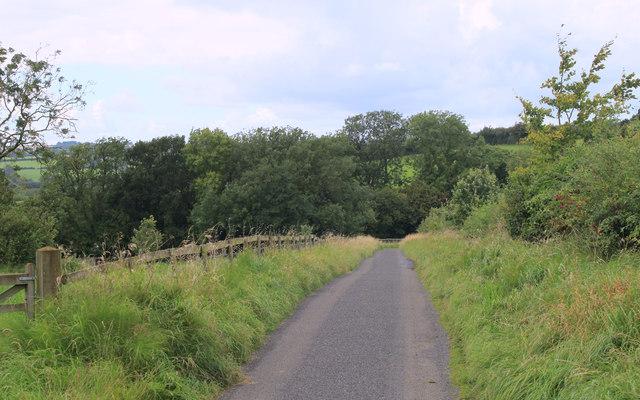 2011 : Track to Lodge Farm