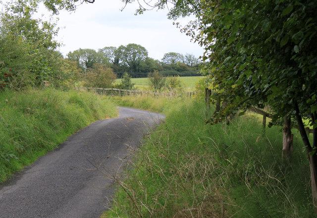 2011 : Track to Cockpit Lane
