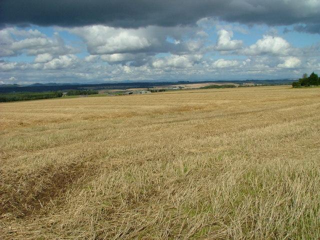 Stubble field near Clathymore