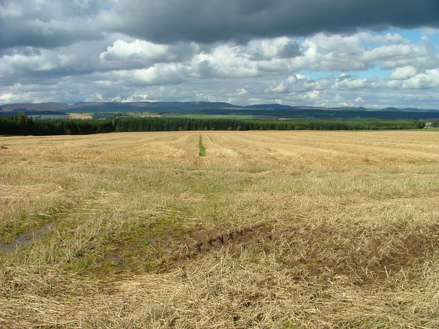 Stubble field at Findo Gask