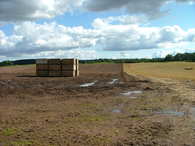 Tattie boxes at Clathymore