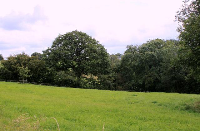 2011 : South near Lodge Farm