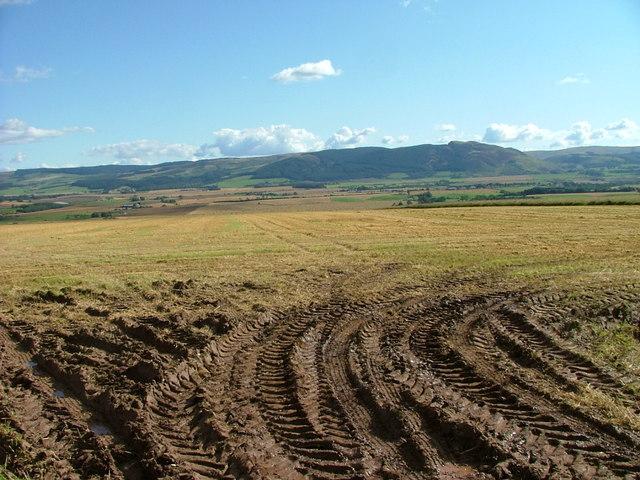 Muddy field entrance