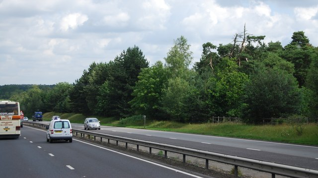 The A11