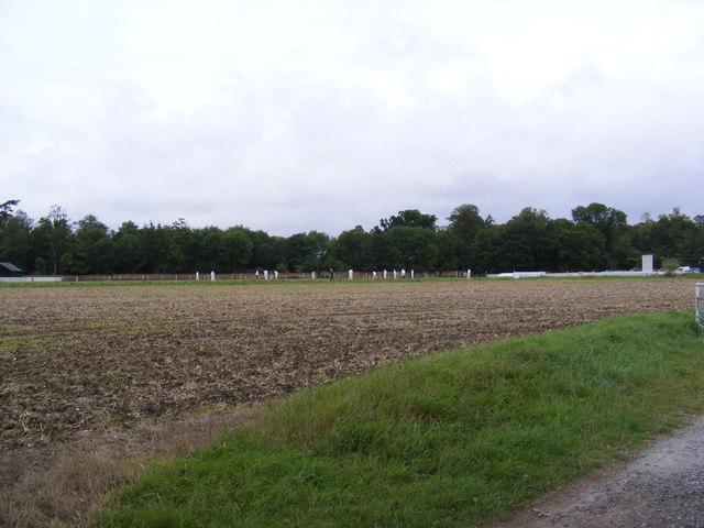 Easton Cricket Club Match