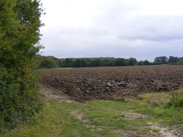 Field entrance off Easton Lane