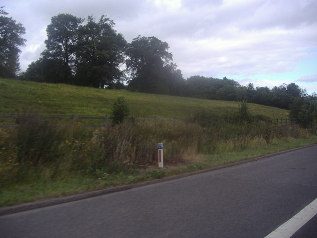Field by the M25, Chevening