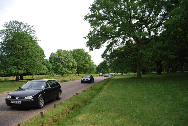 Road in Richmond Park