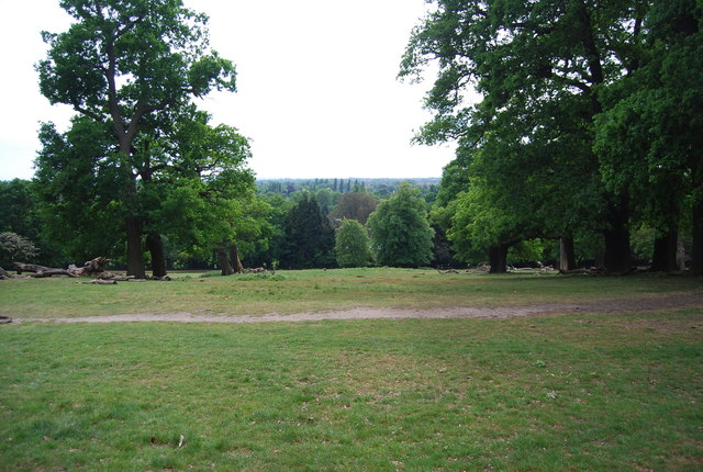 View out in Richmond Park