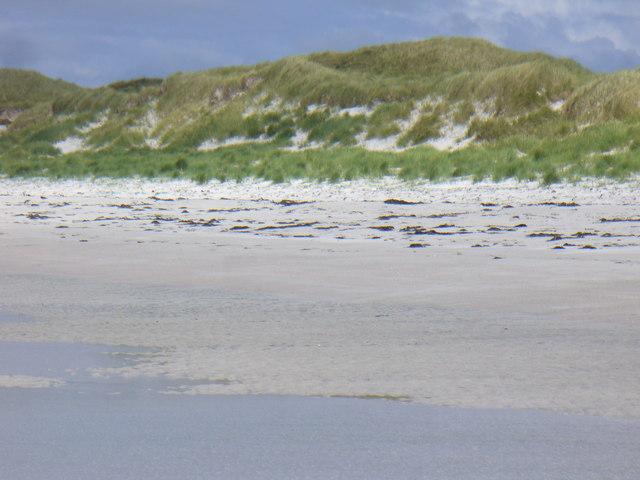 Sand Dunes, West Beach