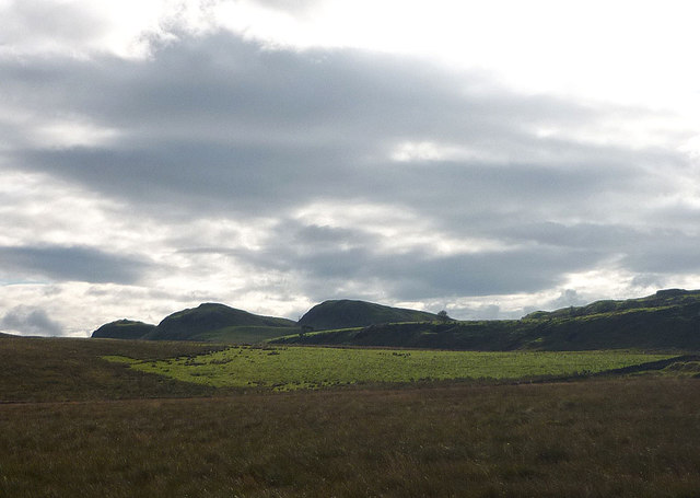 Rough grassland near Walltown