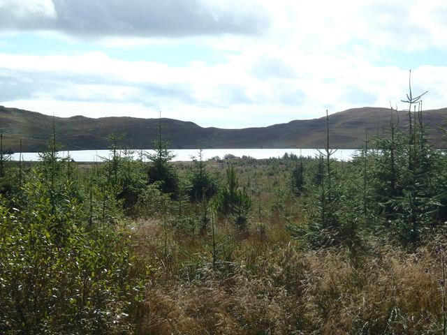 Loch Whinyeon