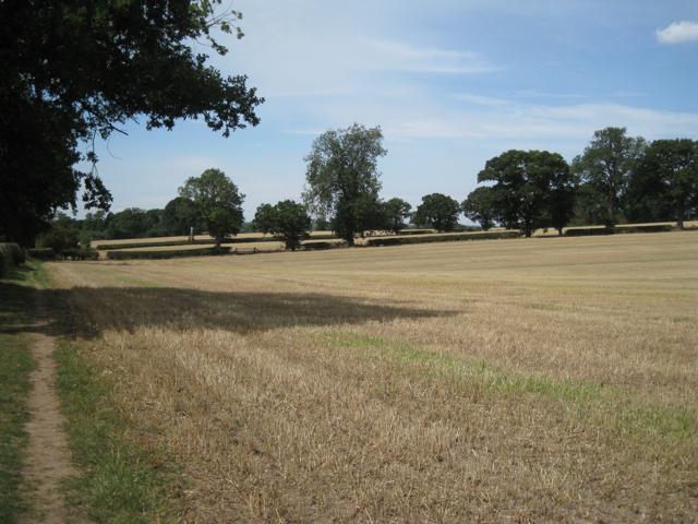 Harvested fields southwest of Four Oaks