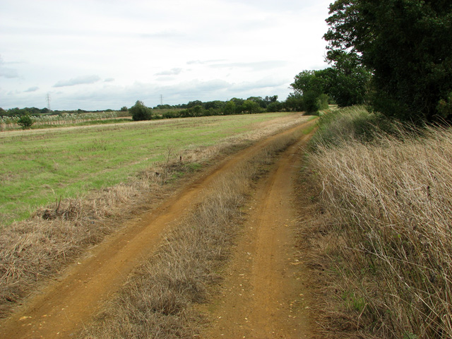 Public bridleway to Ferretshill Plantation, Middleton