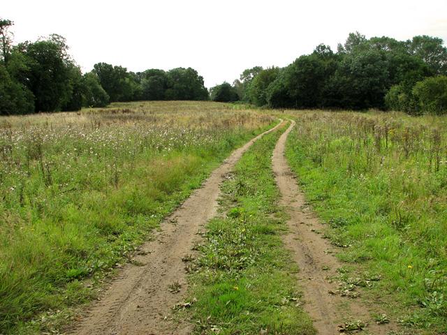 Footpath no longer to Ferrettshill Plantation, Middleton