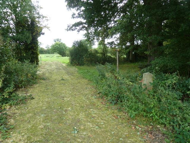Footpath crossing waymarker east of Bower Farm
