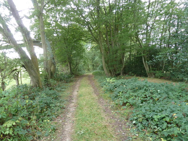 Footpath south to The Hooke