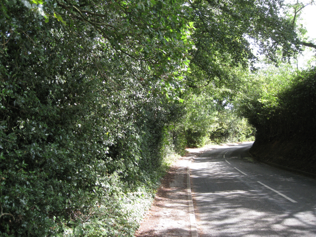 A blind bend on Back Lane