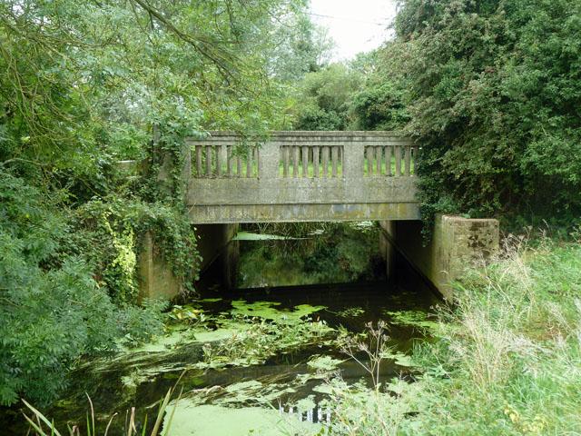Absol Bridge