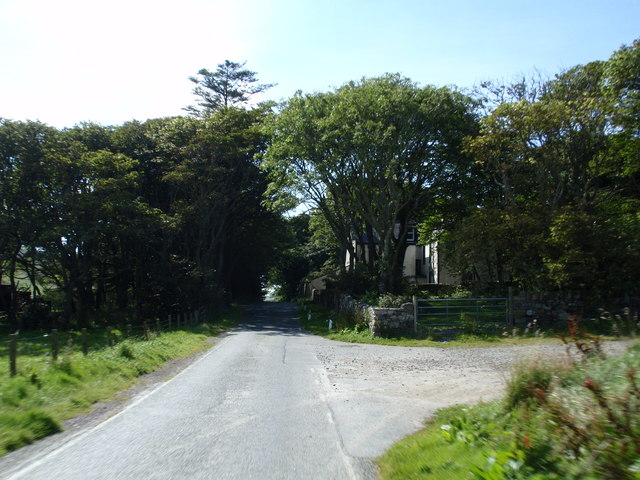 Trees at Kergord