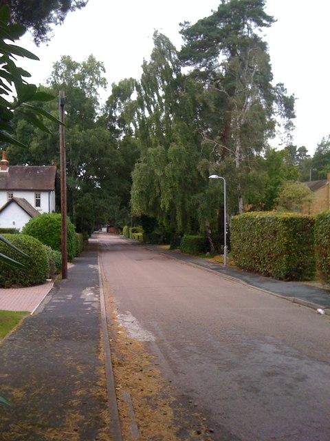 Goldney Road