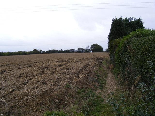 Footpath to Bird's Lane