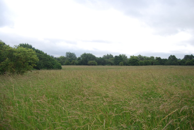 Grassy meadow near Birling Ashes