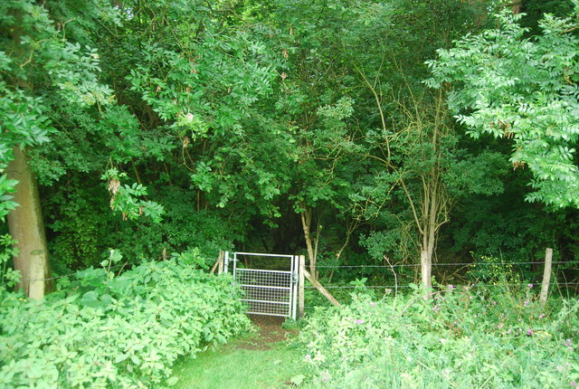 Footpath entering Birling Ashes
