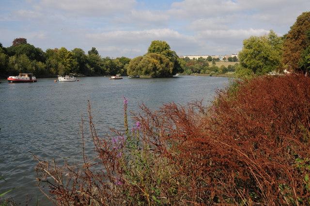 River Thames near Richmond