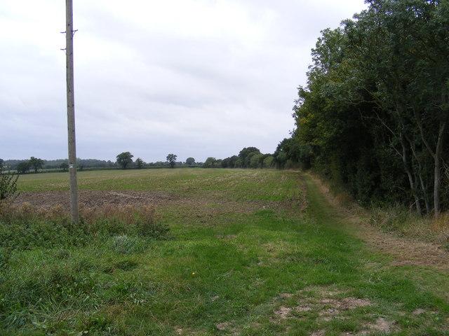 Footpath to Church Row Piece
