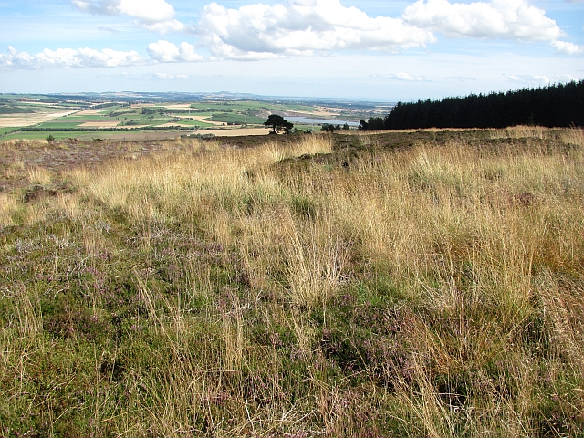 Moorland, Benarty Hill