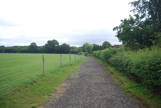 Footpath near Birling Ashes