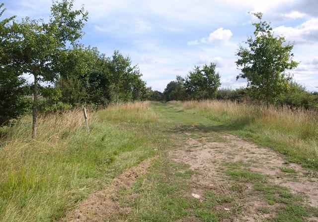 Footpath near Wedhampton