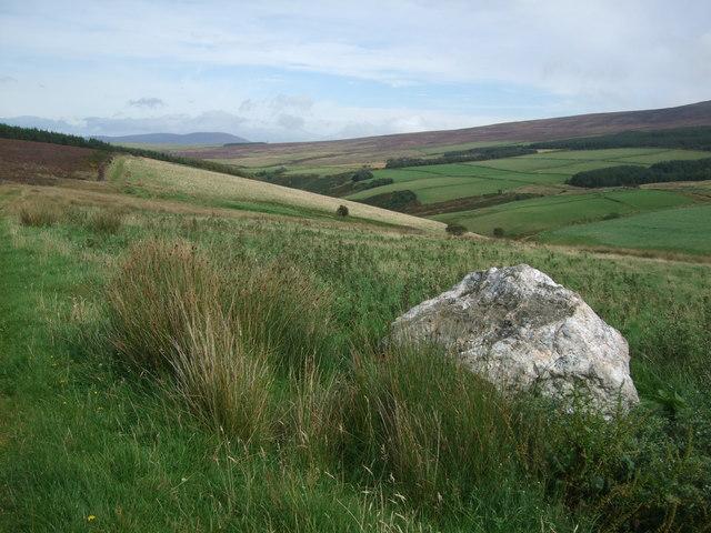 Quartz boulder aside Bayr Ny Skeddan path