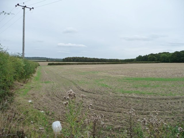 Large stubble field south of Hall Green