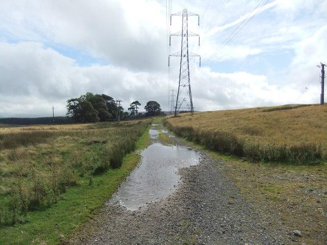 Path near Busk